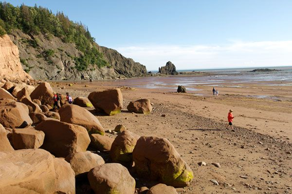 Walk the ocean floor on the Bay of Fundy