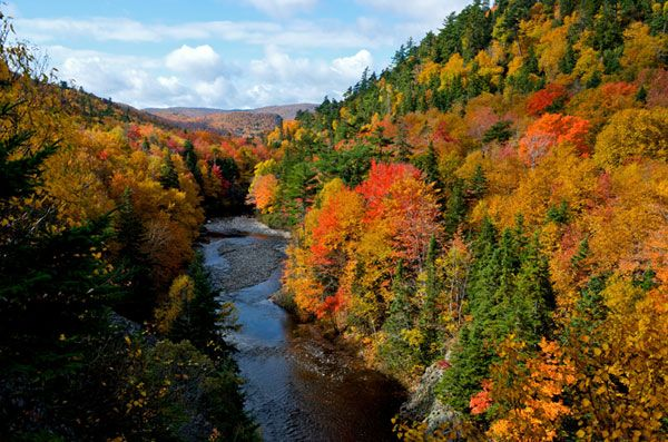 Fall in Nova Scotia ...Glorious Colour