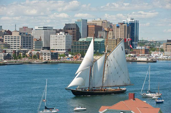 The Bluenose on Halifax Harbour